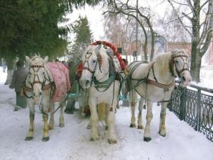 ruska-zima-letecke-vikendy-ruskazima5_770
